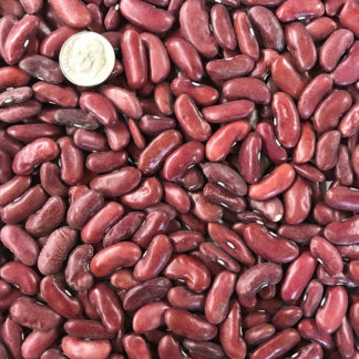Dark Red Kidney Bean Seeds