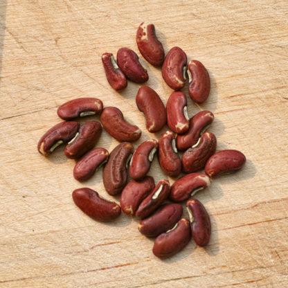 Yardlong Bean Seeds