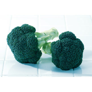 Green Magic F1 Hybrid Broccoli