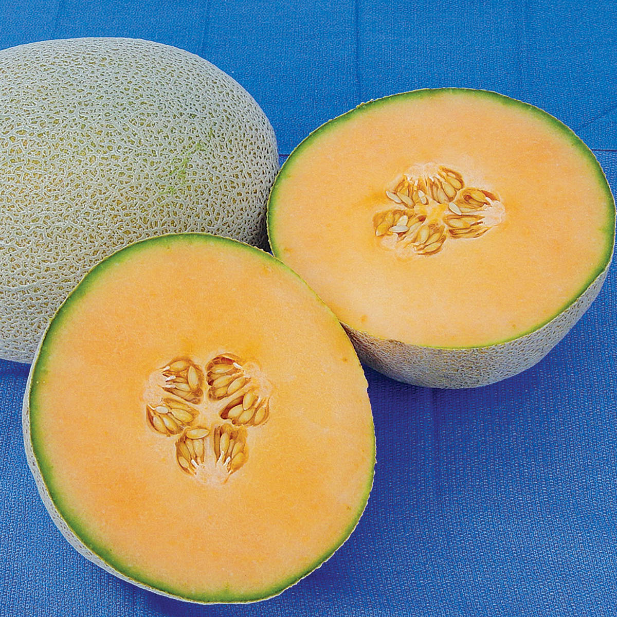 Python F1 Hybrid Melon Seeds Ne Seed Learn about the health benefits of cantaloupe / melons for free. python f1 hybrid melon seeds