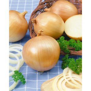 31770-Yellow-Granex-F1-Onion