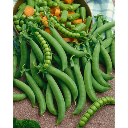 Green Arrow Peas