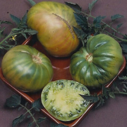 Aunt Ruby's German Green Beefsteak Tomato