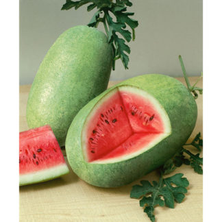 Charleston Grey Watermelon