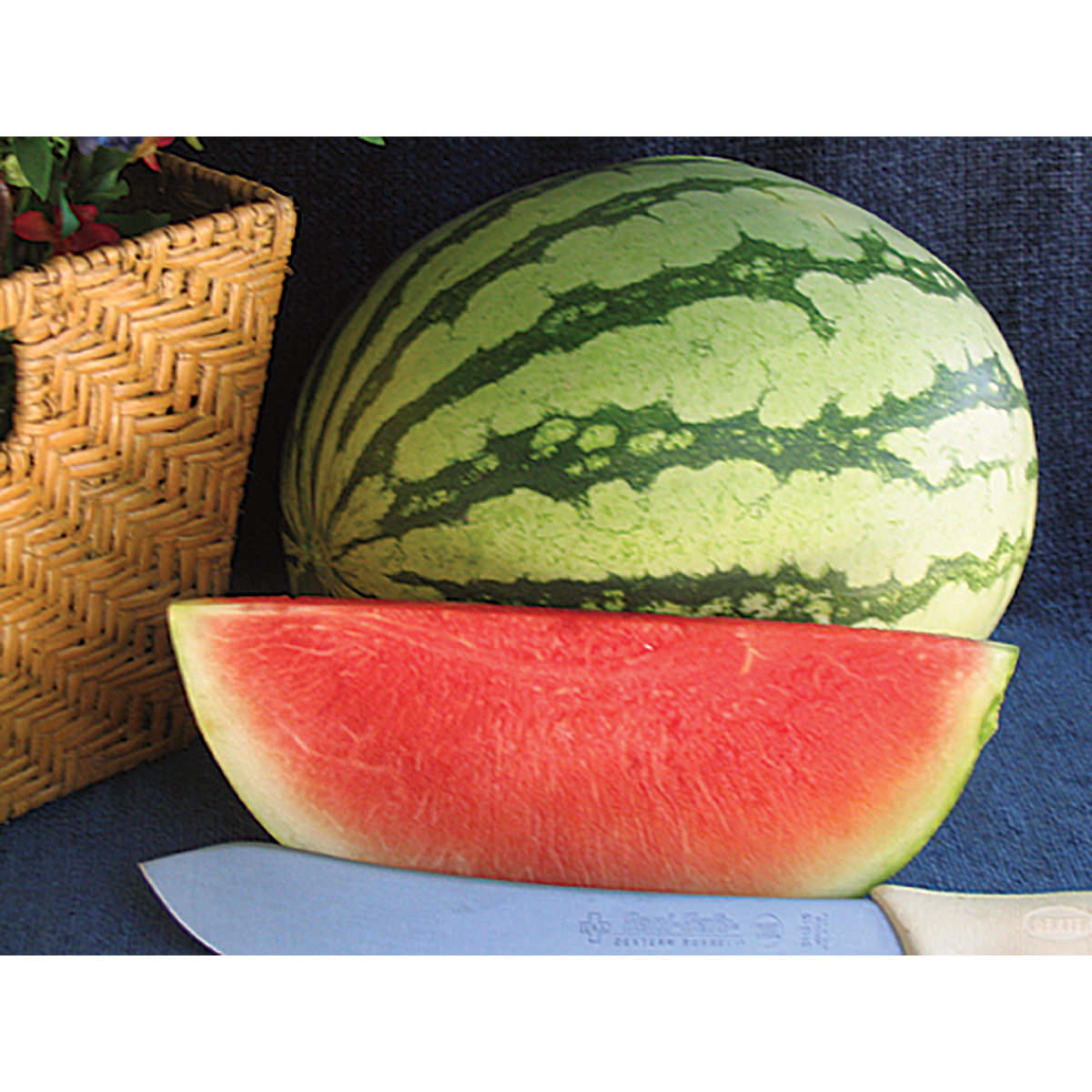 hybrid watermelon Yellow watermelon seeds for planting mountain valley seed brand yellow baby doll hybrid watermelon unique garden fruit seeds non-gmo, free shipping on.