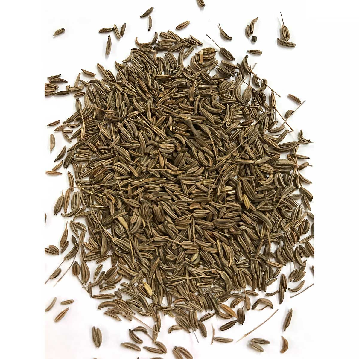 How to Use Caraway Seeds How to Use Caraway Seeds new images